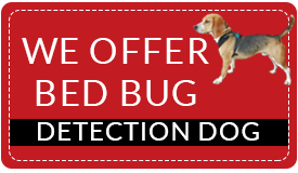 bed-bug-detection
